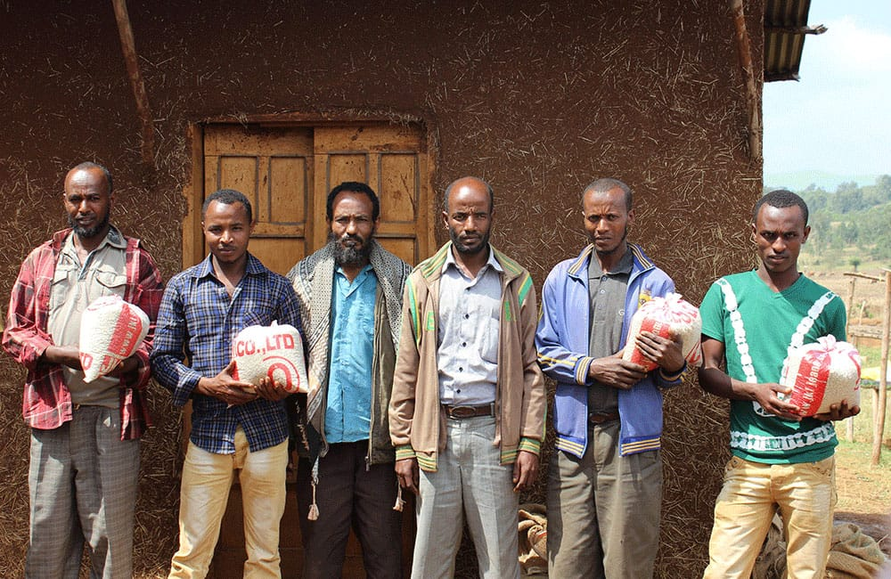 Biftu Gudina a favorite from the heart of Ethiopia. The cooperative was established in 2012, and is located in the Agaro.