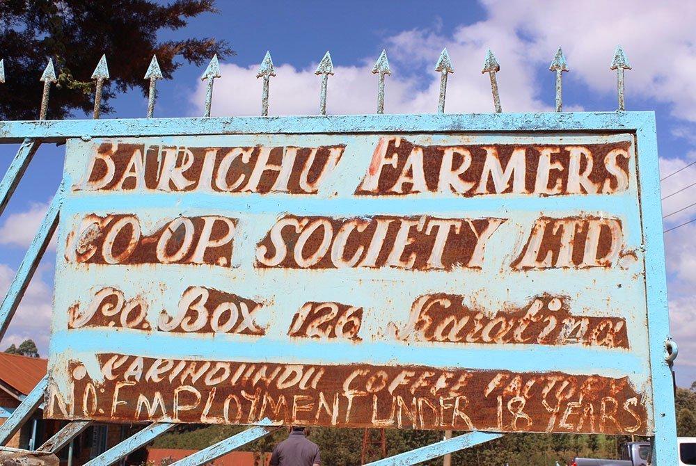 Karindundu AB high altitude coffee from mount Kenya 11