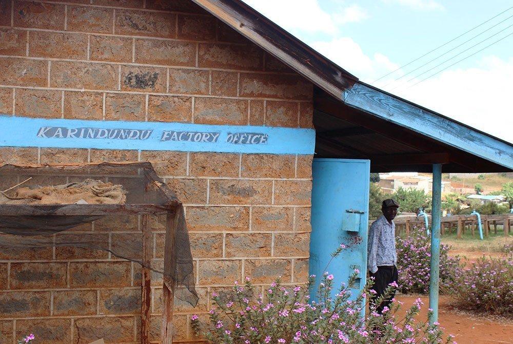 Karindundu AB un café de altura del Monte Kenia 7
