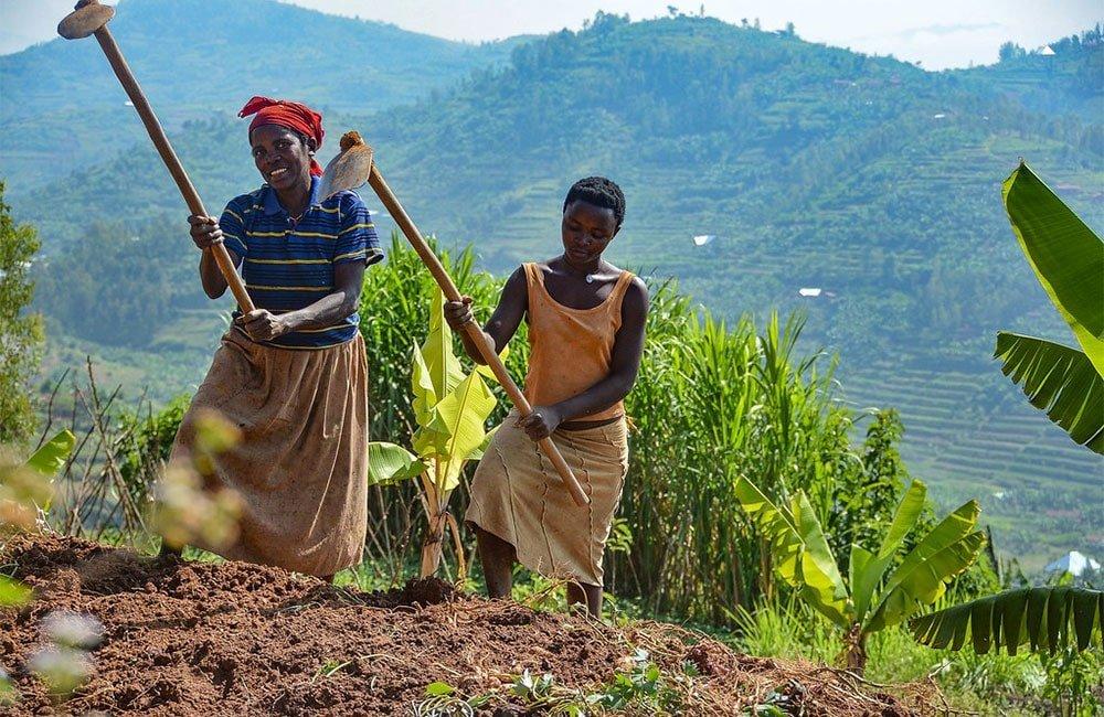 Ngororero - Ruanda 8