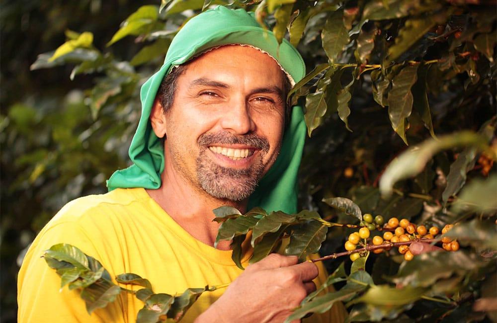Caficultor de café de especialidad en Sao Sivestre, Brasil