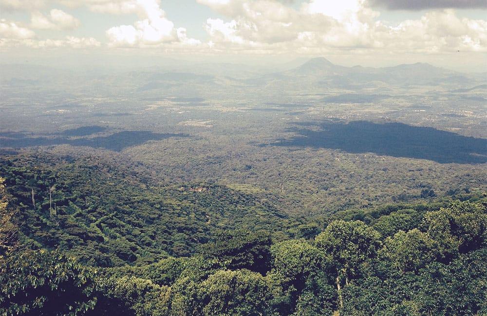 FES Anaeróbico El Salvador 48 horas y 120 horas.