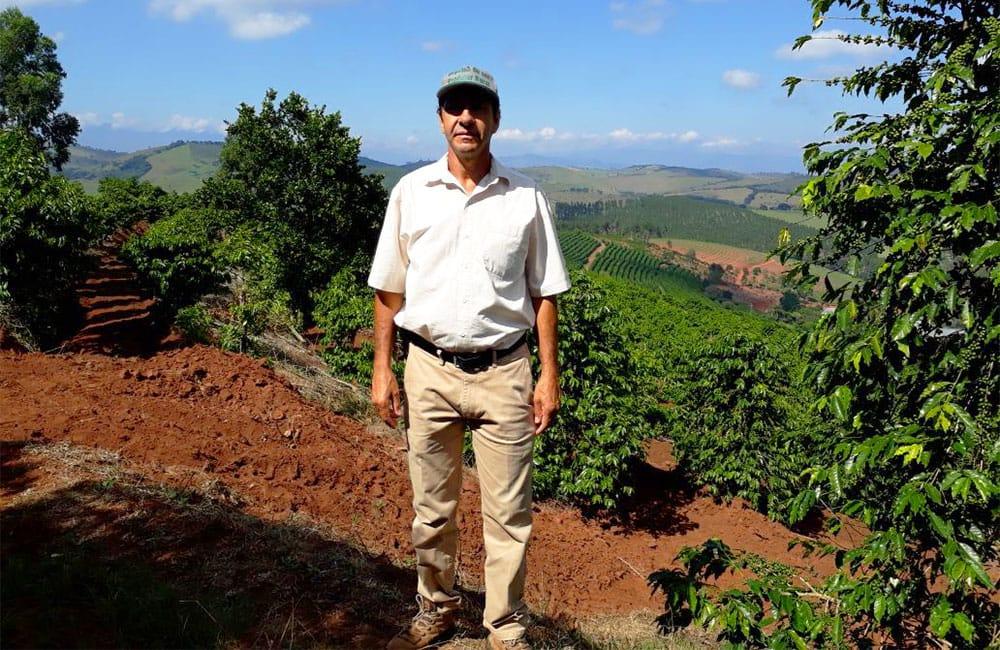 Pe de Cedro en Brasil y su Red Bourbon