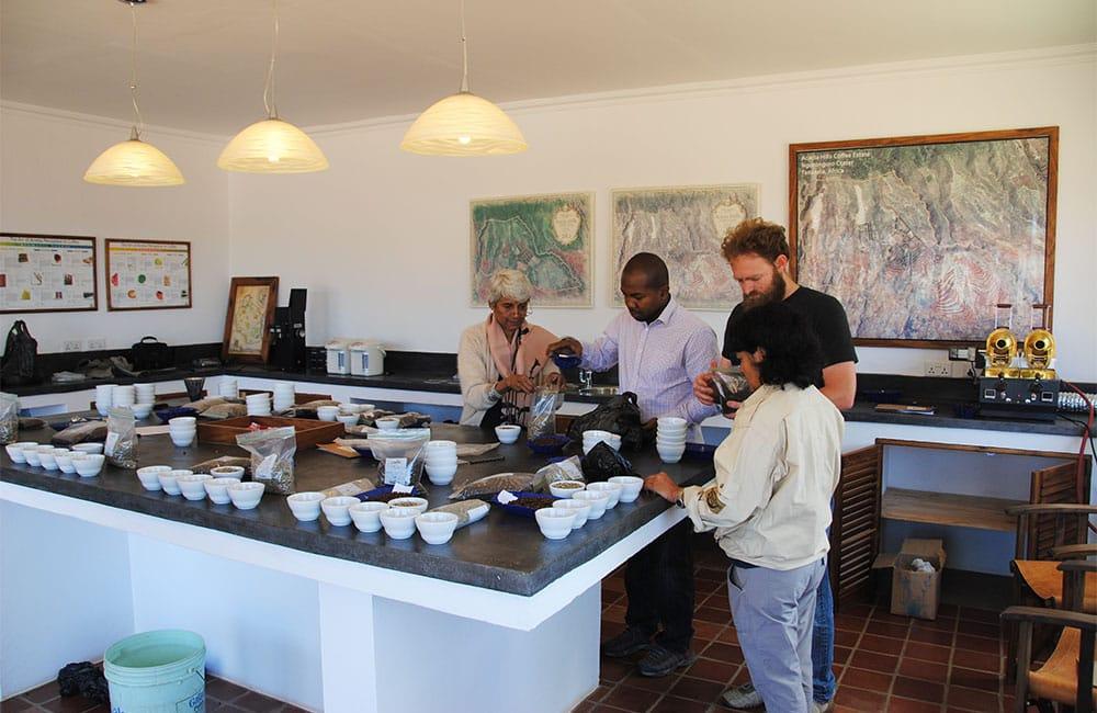 Un café de Acacia Hills en Tanzania a 1.800-1.900 msnm