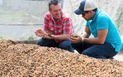 El café de El Perezoso de West Valley en Costa Rica